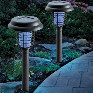 Perfect Decorating With Solar Patio Lighting
