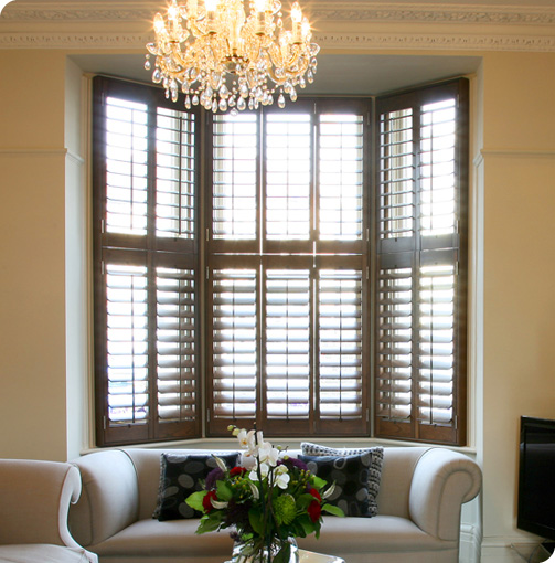 Shop for Shutters - DIY Window Shutters - Plantation and Solid