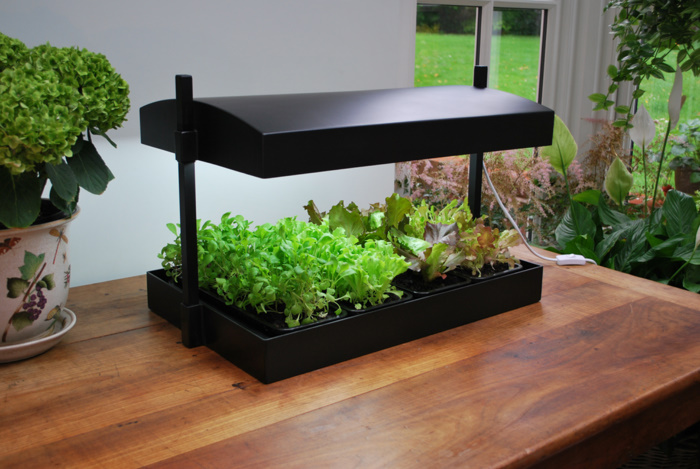 energy efficiency and grow light gardening. Black Bedroom Furniture Sets. Home Design Ideas