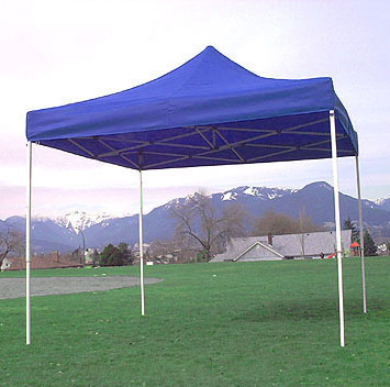 Custom Canopy, 10 x 10 tent, 10 x 20 tent  Portable Outdoor