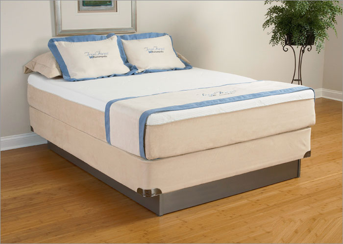Affordable Sleep System Back Support Topper Size: Queen