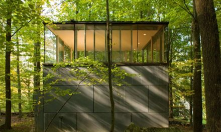 Ultimate Treehouse Getaway in Olive Bridge New York by Gluck & Partners Architects