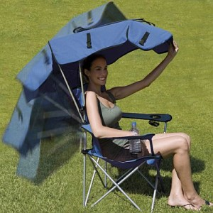 sc 1 st  Everything Simple & Main Advantages of a Canopy Chair