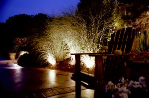 Accenting a Garden with Spot Lights
