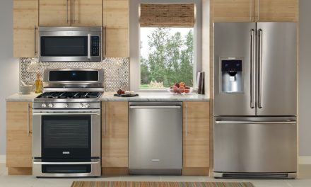 Top 5 Best Convection Ovens Reviewed for Baking and Roasting